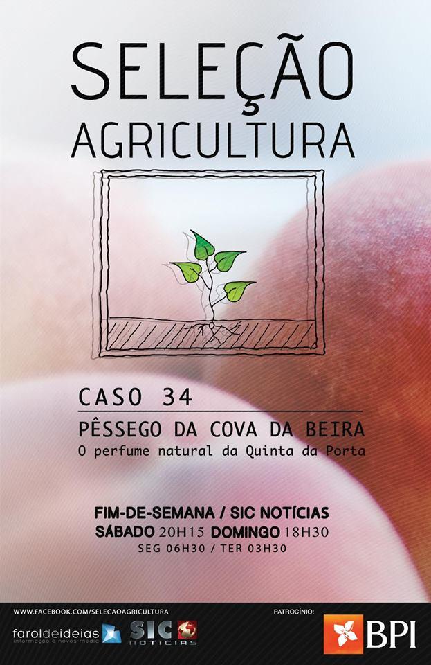 selecçao agricultura